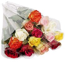 Bouquet Remerciement Rose Fraiche