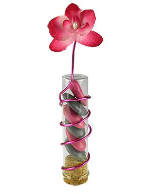 Eprouvette transparente avec dragées et orchidée
