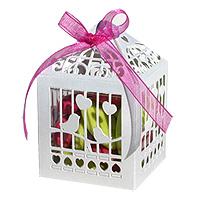 Boites Cages à Oiseau Blanc Dragées x20