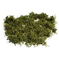 Mousse Végétale Naturelle 50 gr