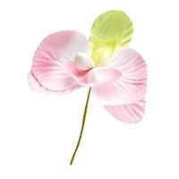 Orchidées Blanc Rose Pastel Déco Mariage