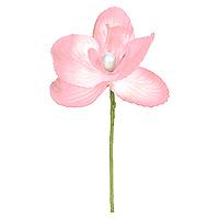 Orchidées Déco sur Tige Rose x 6
