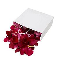 Pétales de Roses Frais Rouges Mariage
