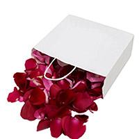 Pétales de Roses Frais Rouges 40 Poignées XL