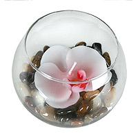 Le Photophore Boule Rond en Verre Orchidée et Cailloux