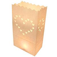 Lot de 10 Sacs Luminaires pour Allée ou Jardin Coeurs