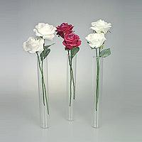 Lot de 3 Mini Vases Eprouvettes Tube avec 5 Roses