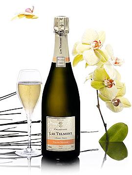 Champagne Grand Vintage Millésimé de Jean de Telmont