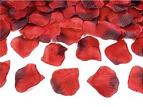 100 Pétales de Rose Artificiels Mariage Bordeaux