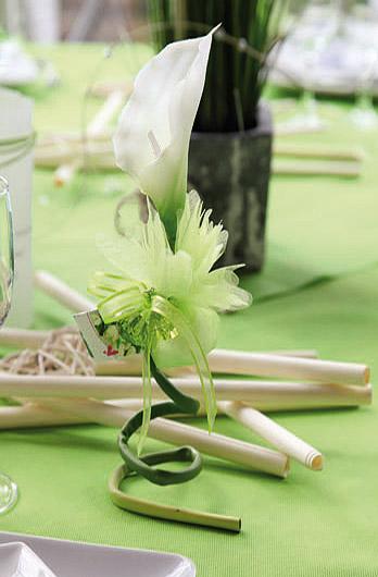 La fleur sur longue tige arum g ante blanche noel - Fleur blanche longue tige ...