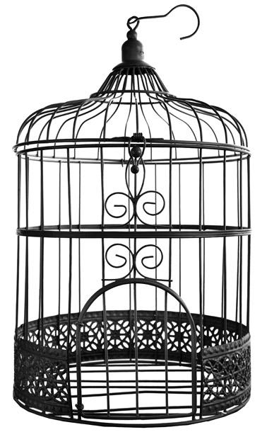 cage oiseaux urne m tal noir urnes mariage tirelires. Black Bedroom Furniture Sets. Home Design Ideas
