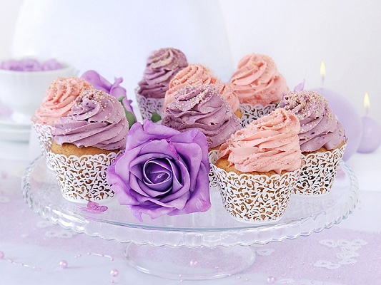 Entourages colerettes cupcake dentelle papier x10 candy - Presentoir a cupcake pas cher ...