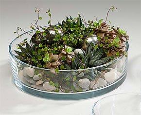 Coupelle en Verre ronde Décoration Florale Transparent