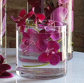 Pot Verre Cylindrique Transparent Déco Florale Orchidée