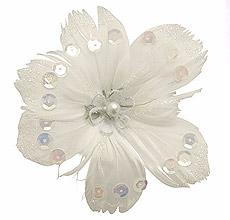 Fleurs Plumes Paillettes Pince Blanc