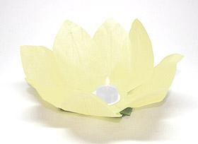 Lanterne flottante lotus Thai ivoire