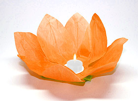Lanterne flottante lotus Thai orange