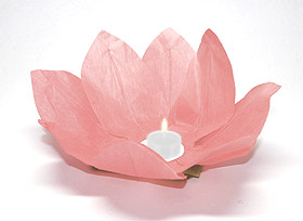 Lanterne flottante lotus Thai rose