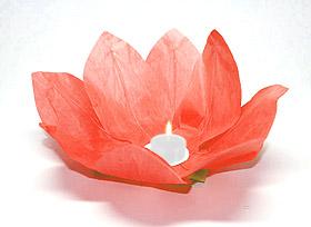 Lanterne flottante lotus Thai rouge