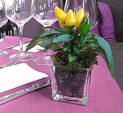 Mini pot fleur Carré Verre Epais