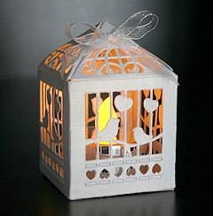 Mini Cage à Oiseaux Carton avec led
