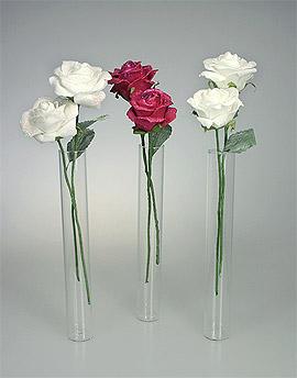 Mini Vases Eprouvettes Tube avec Roses