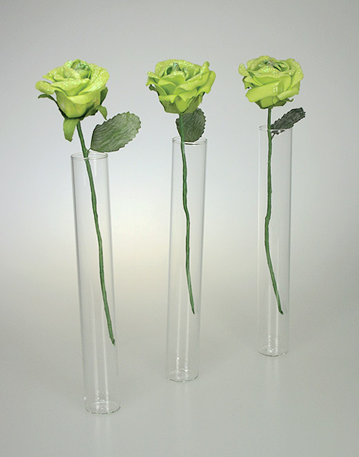 lot de 3 mini vases eprouvettes tube avec 5 roses noel. Black Bedroom Furniture Sets. Home Design Ideas