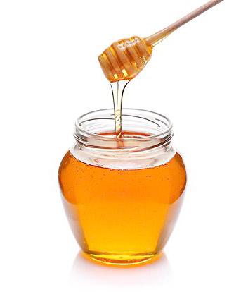 Miel pour remplir des petits pot