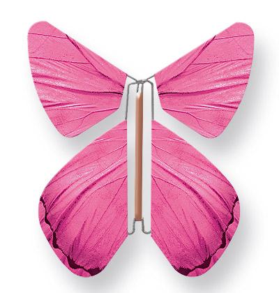 Papillon Magique Fuchsia