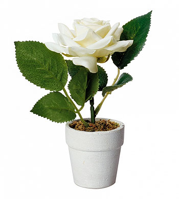 Petit Pot Rose Blanche Artificielle